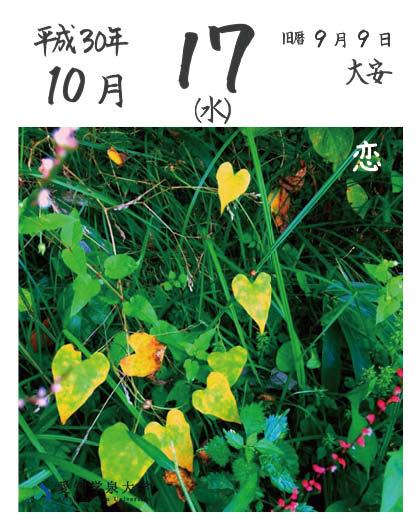 asahimekuri-20181017